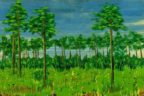 lost pine 05 Thumb